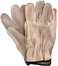 XLarge/10 Driver's Gloves