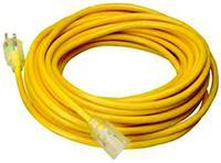100' Indoor/Outdoor Extension Cords