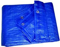 10'x12' Light Duty Reinforced Polyethylene Tarps