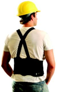 The Reinforcer Small Back Supports